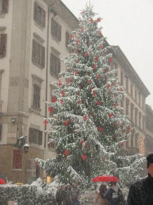 クリスマス、いかがお過ごしですか?