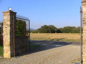 門をくぐって外に出ると・・・