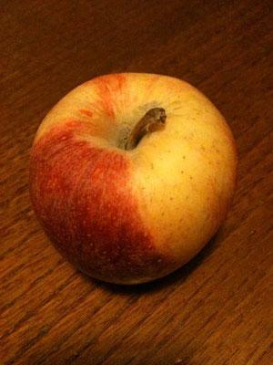 今日はリンゴのお話。続きを読むをクリック。
