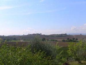ホテル前の景色。クレタ・セネーゼ独特の丘風景