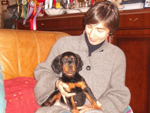 Oggi 28.12.09 Aranel è entrata nella sua nuova casa (in Lombardia).Età 2 mesi e 6 giorni.Per  motivi diversi la nuova proprietaria ,ha ceduto a sua volta Aranel ad altri ,senza darci i nuovi contatti di riferimento x seguire la gordon.Peccato