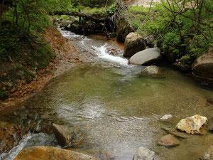 小さな淵から小さな滝へ流れが落ちる