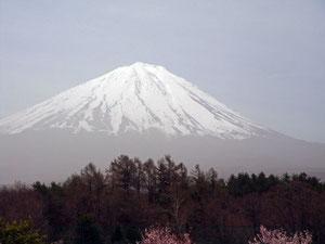 黄砂に霞む富士山 まだまだ雪が多い