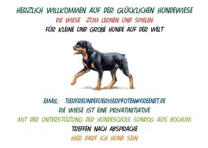 Ehrenamtliche Seite der Glücklichenhundeweise Dortmund