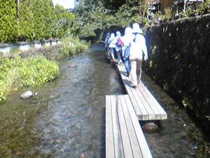 源兵衛川を歩きました。(川の中で草刈りもしました)日曜のせいか多くの観光・散歩の人が。水は15度くらいで冷たい。