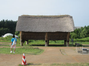 (おまけ)三内丸山遺跡。広い敷地に縄文時代の遺跡が点在。