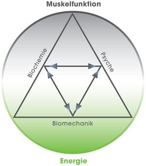 Biochemie, Biomechanik, Psyche
