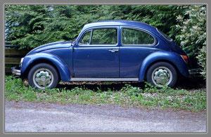 Modell: Käfer