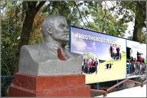 фото А.Тихонова