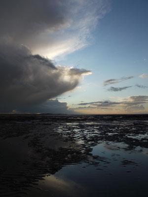 Pensez à réserver votre sortie nature en Baie de Somme!