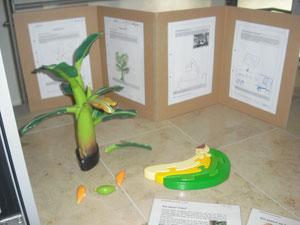 Von der Bananen-Plantagen bis zu uns