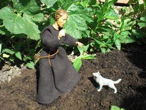 Franziskus und der Wolf