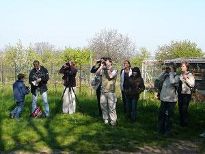 Vogelstimmenexkursion in Leimen