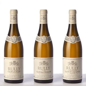 Domaine de la Folie - Chardonnay d'appellation Rully