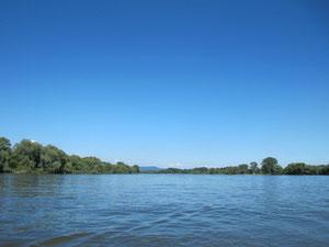 ...über die blaue Donau