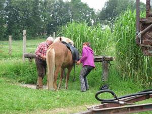 zwei Leute satteln das Pferd des Rittführers...