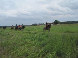 zwischen Feldern und Wiesen zum Abendquartier