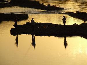 pêche rivière garonne