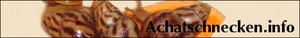 empfehlenswerter Blog