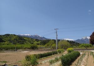菜園と山々 甲斐駒ケ岳(右)と鳳凰三山(左)