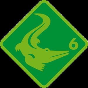 Grundlagentest Schwimmabzeichen Krokodil