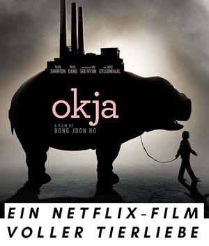 """Film-Poster """"Okja"""", Netflix-Film"""