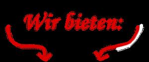 Folgendes wird geboten auf der Geburtstagsparty der TOWASAN Karate Schule Gruenwald