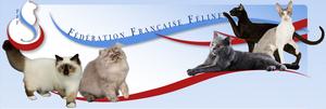 Fédération Française Féline