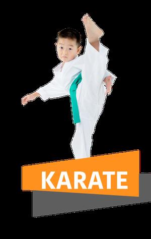 Das TOWASAN Programm für Erwachsene Karate und Kickboxen