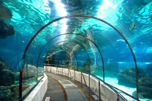 аквариум Барселоны