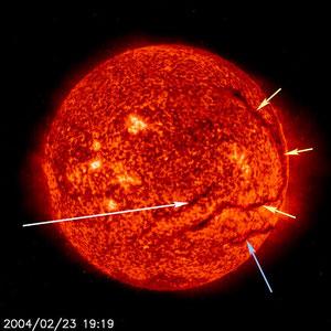 Filamente (Bildquelle NASA/ESA)