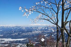 雪の花と白山