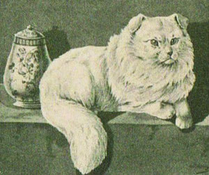 Basis und Genetik einer Katzenpopulation zu verstehen