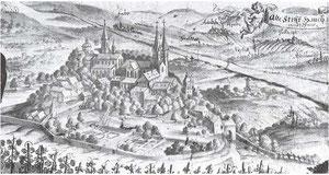 Das mittelalterliche Stift Haug