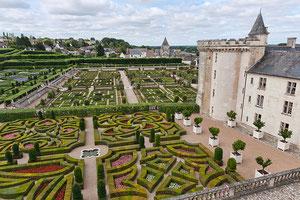 Der barocke Garten des Chateau de Villandry in Frankreich