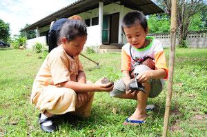 日本とタイの子供たちが一緒に植林した様子。