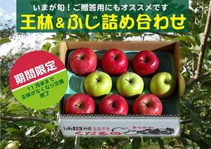 りんご詰め合わせ 直売所