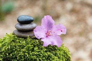Steinmännchen mit rosa Blume