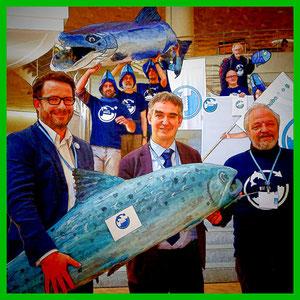 WWF: Lachs-Comeback an der Rheinministerkonferenz in Basel