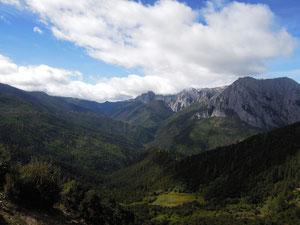 Wälder und Berge auf dem Weg Richtung Shangri-la