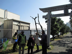 琵琶島神社