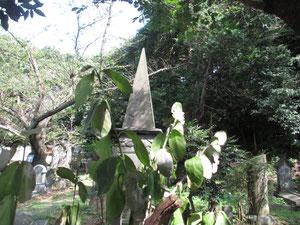 外国人墓地22区