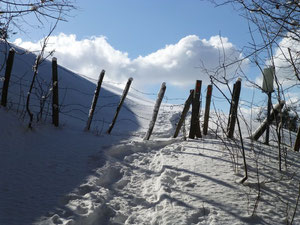 L'arrivée dans la prairie en hiver