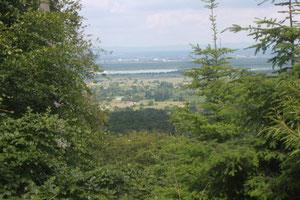 oberhalb Malsch - Blick in die Rheinebene