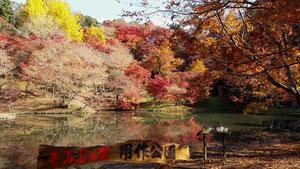 用作公園は岡藩家老の別荘地で、紅葉の名所です。