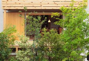 常緑樹による目隠し_立川の家_いろは設計室
