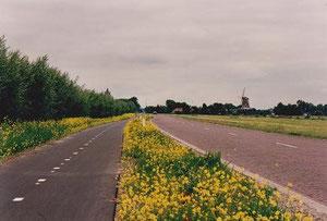 オランダ アウトホールン付近 (p129)/ Noord Hollland