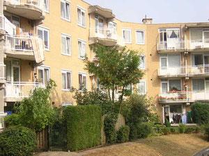 ロッテルダム:一般的な集合住宅の中庭