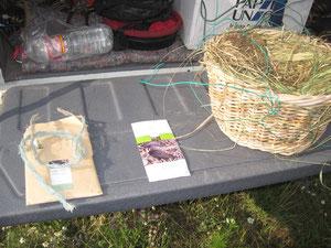 Nistkörbchen für Baumfalken (links: das gefährliche Bindegarn)