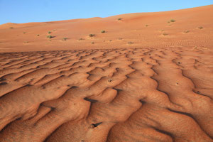 """Omans Naturschätze erleben"" - Wahiba Sands"